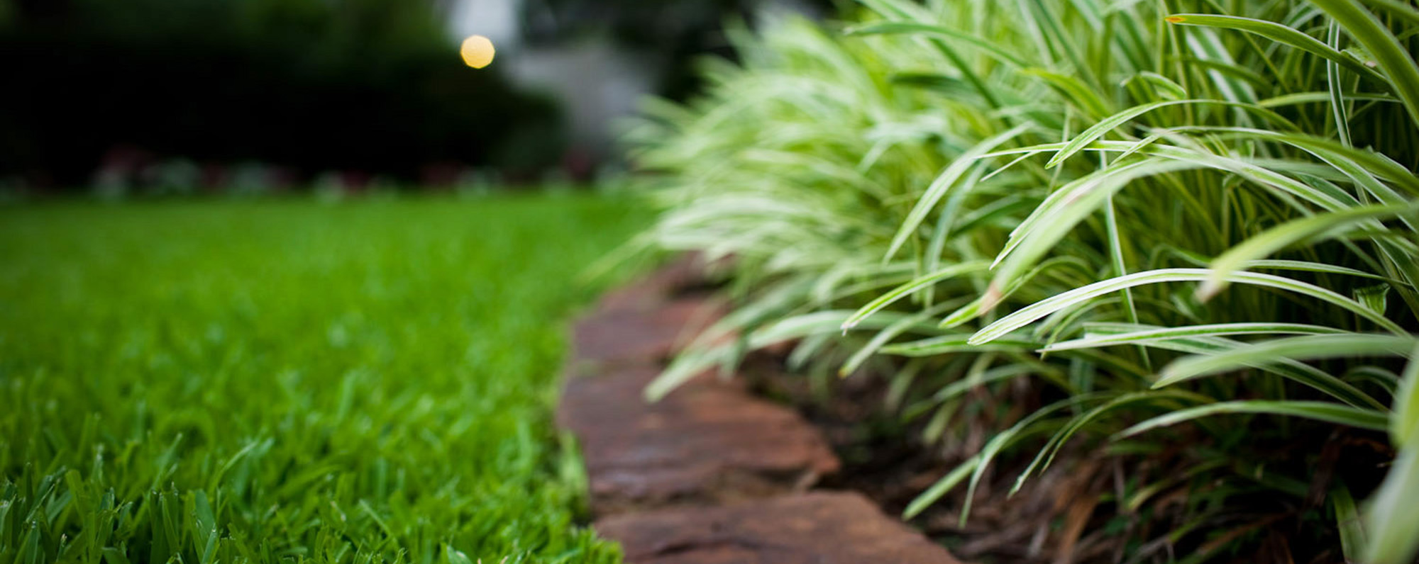 landscape-maintenance-prevent-mold-nj