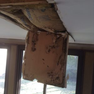 roof-leak-causes-ceiling-mold-nj