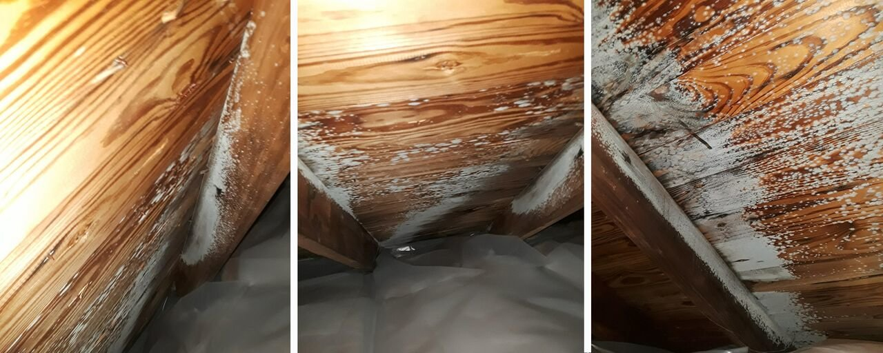 musty-attics-can-freeze-during-winter