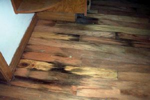 staining on wood can indicate water damage
