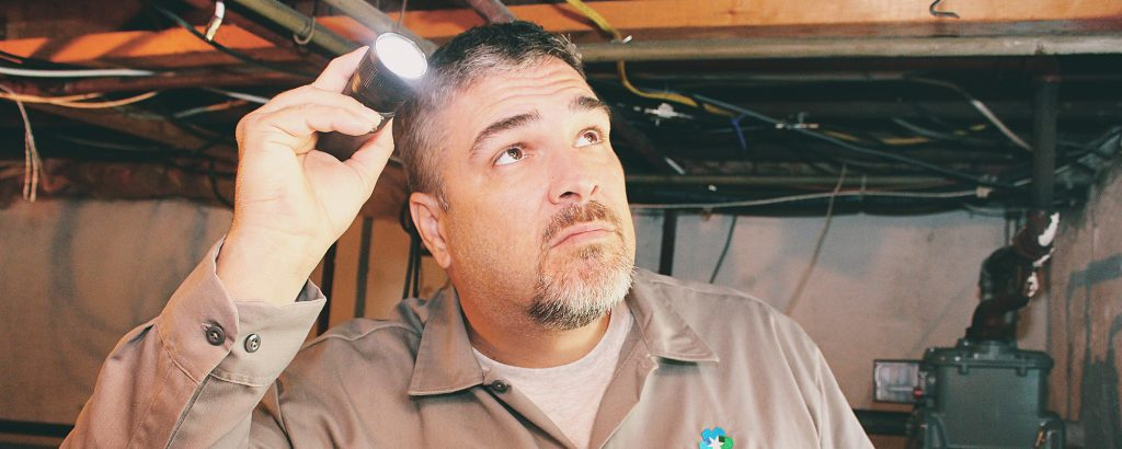 mold-inspection-wrightstown-nj