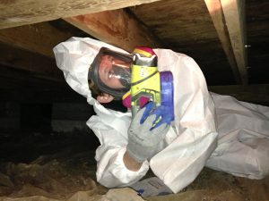crawl-space-mold-new-jersey
