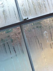 wipe-away-condensation-to-prevent-mold-this-spring
