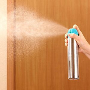 air freshener will only temporarily get rid of musty odor
