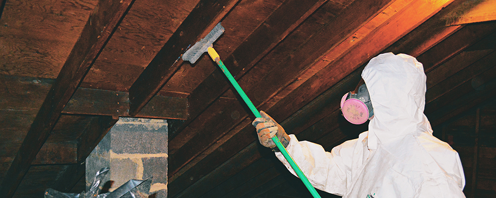 attic Mold Removal in Wenonah, NJ, 08090, Gloucester County (1155)