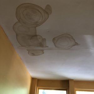staining from flood damage may indicate mold development