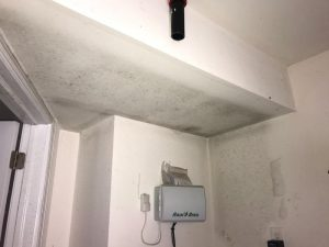 hidden condensation that goes unseen can cause mold regrowth