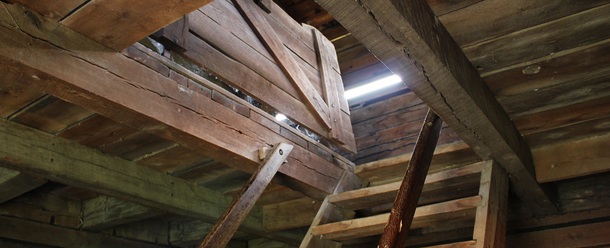 issues that can arise in your attic during winter