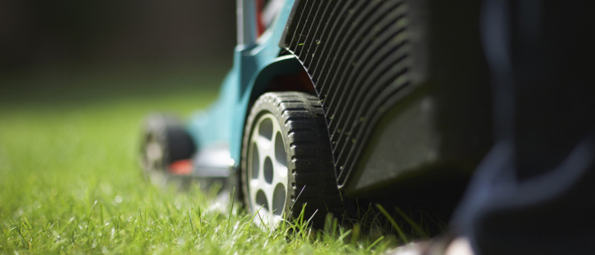 keep lawn clean as part of spring home maintenance