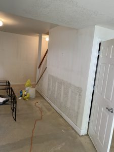 Drywall Mold In Closed Buildings