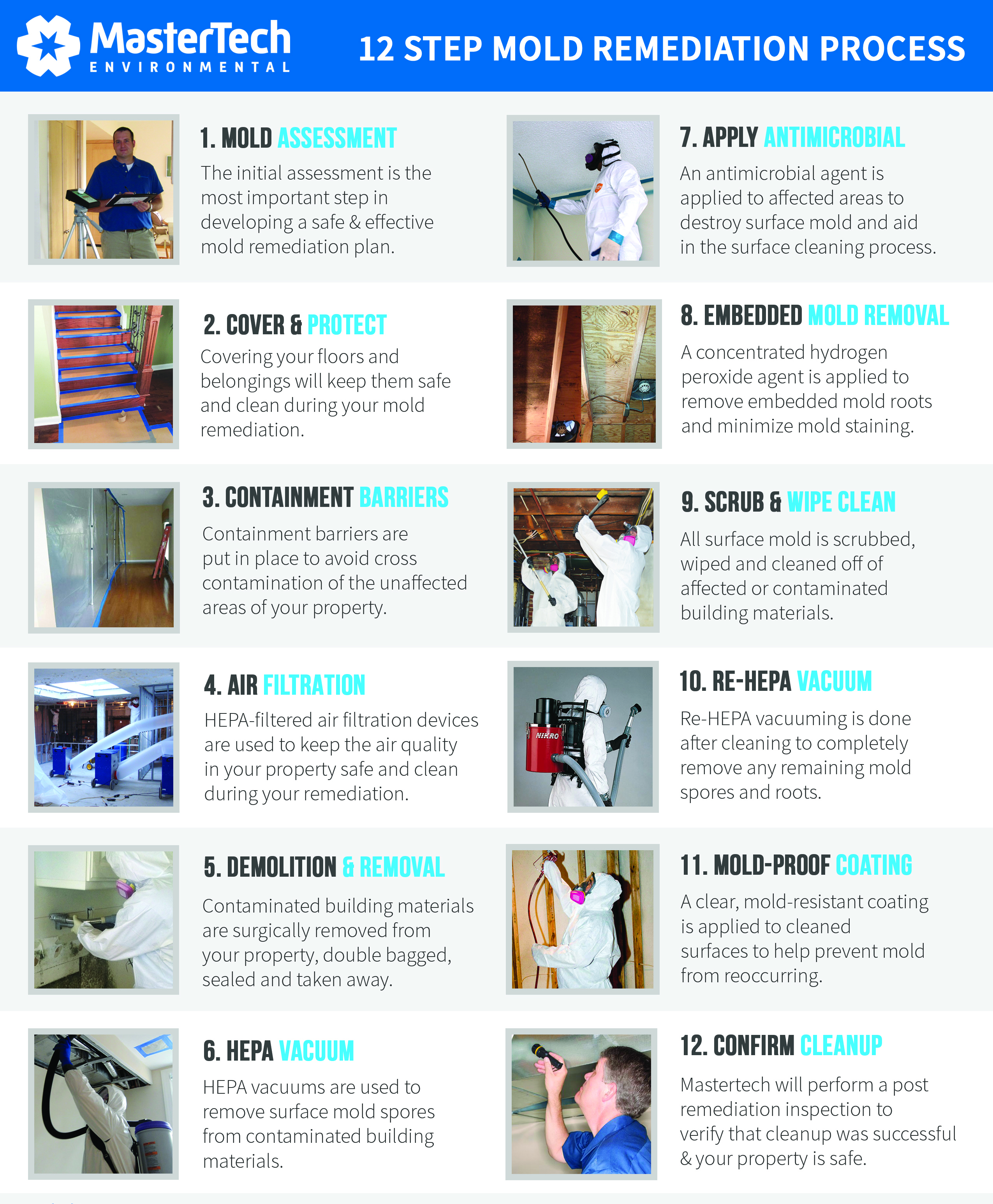 12-Step Mold Remediation Process Ocean County