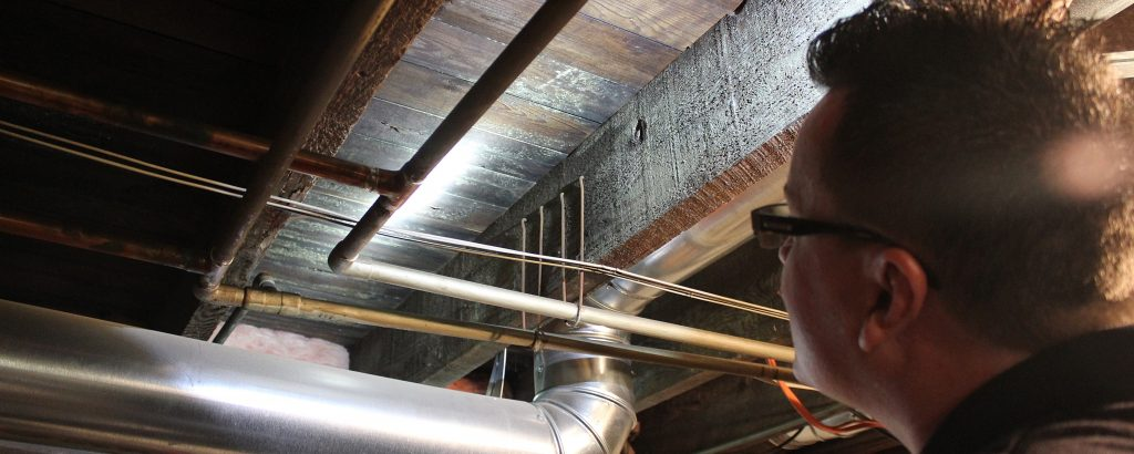 Professional Mold Inspector Southern Monmouth County