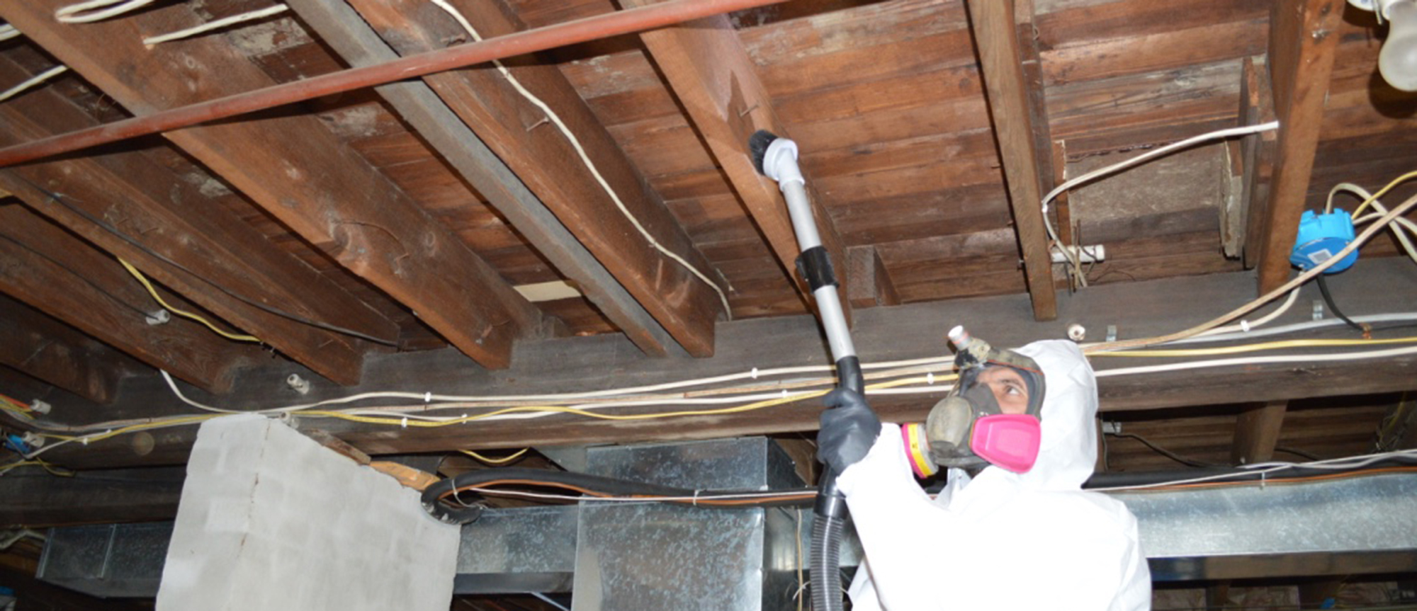 removing mold on floor joists
