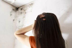 signs of slow leakage causing mold