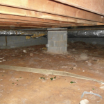 preventing crawl space mold