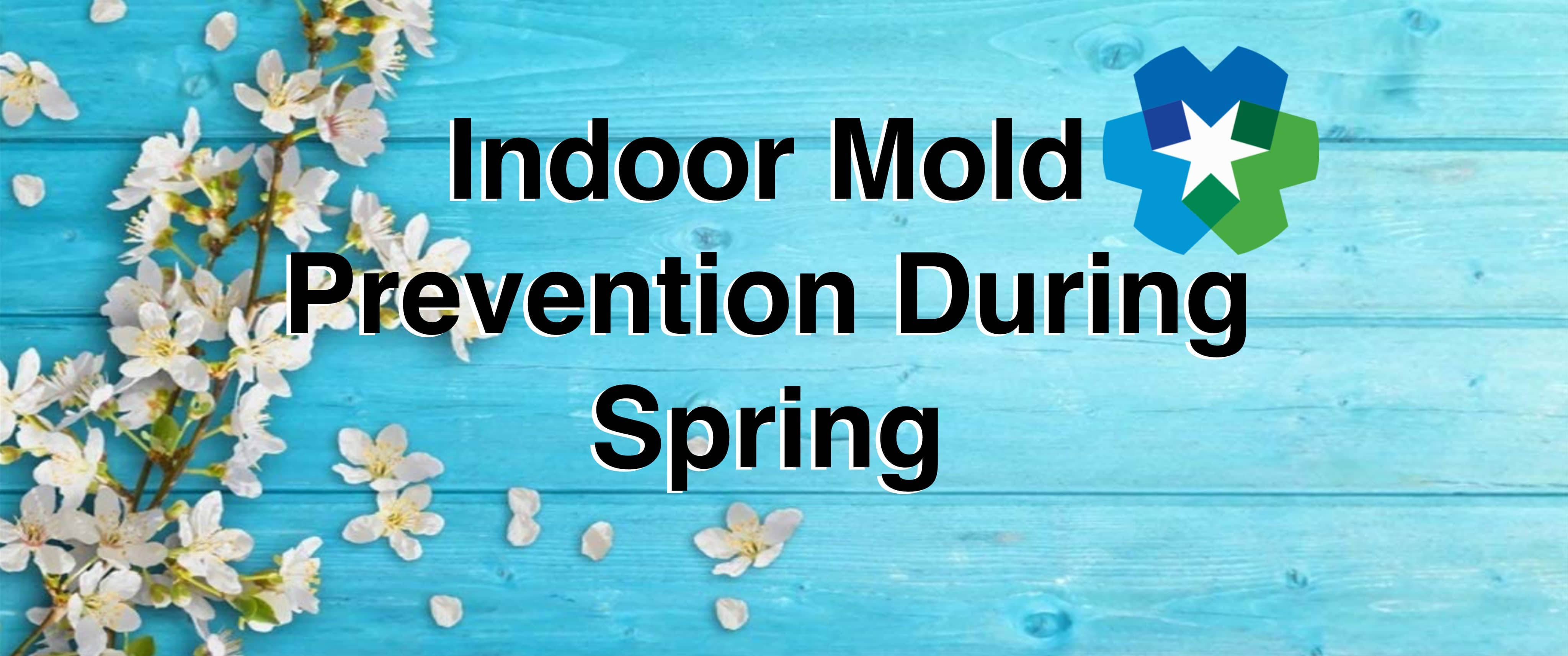 indoor mold prevention during spring south jersey